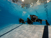 Discover the weightless of swimming underwater.